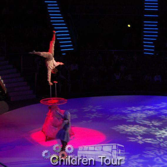 Vizionare Spectacol la Circ